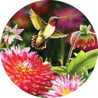 Hummingbird Dahlias Decorative Accent Magnet